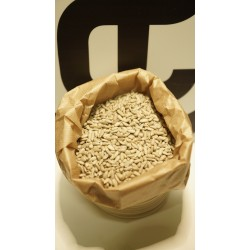 Graine de tounesols décortiquées bio